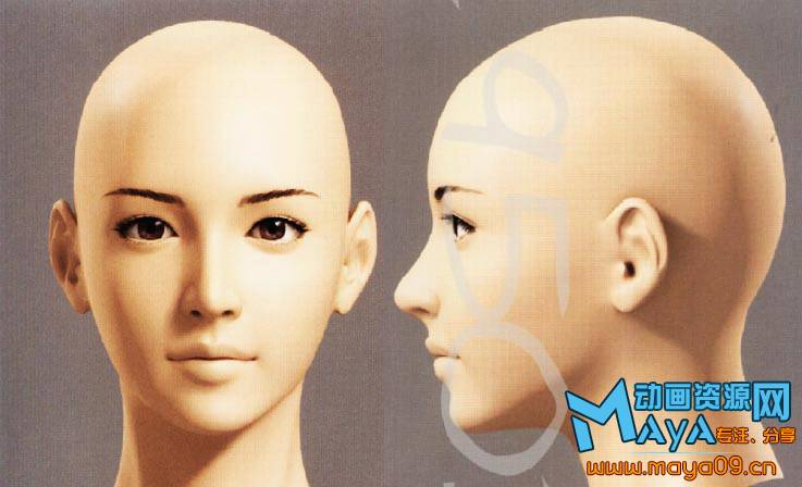 female_head000.jpg